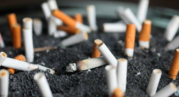 Sigaraya bağlı ölümlerde yüzde 150 ye yakın artış bekleniyor