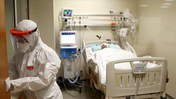 37 bin 674 kişinin Kovid 19 testi pozitif çıktı 339 kişi yaşamını yitirdi