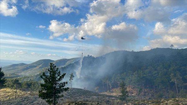 Balıkesir in Edremit ilçesinde çıkan orman yangını