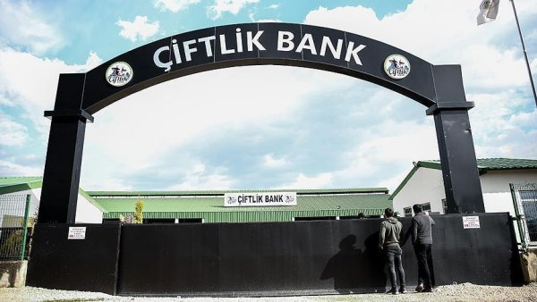 Adalet Bakanı Gül den Çiftlik Bank açıklaması