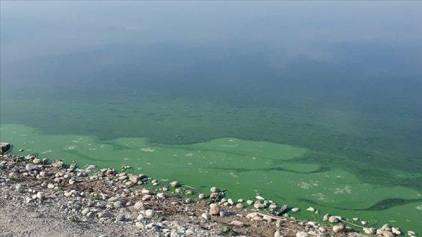 Atatürk Baraj Gölü nün kıyısında renk değişimi