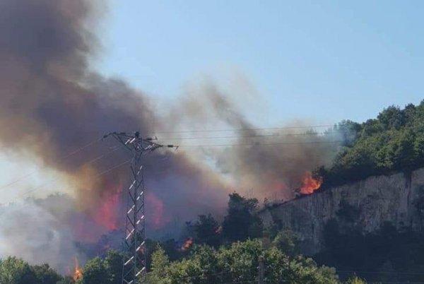 Biga da orman yangını
