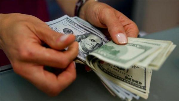 Dolar TL 6 02 seviyesine geriledi
