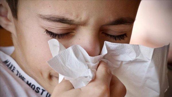 Domuz gribi değil mevsimsel grip