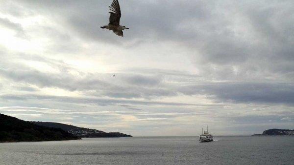 Hasan Savran Marmara Adası ından bildiriyor