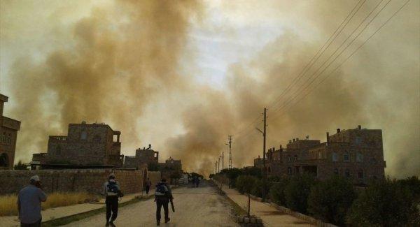 Mardin in Bagok Dağı nda büyük yangın