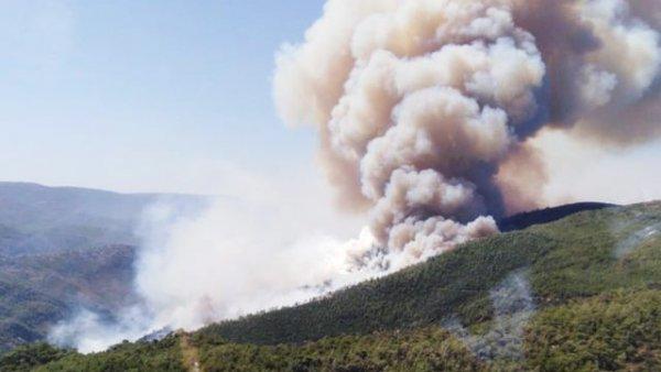 Milas ta orman yangını Giderek büyüyor