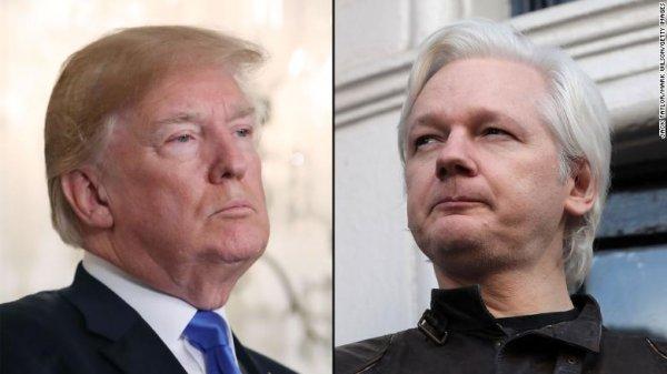 Trump Assange ı sevdiğini söylerken şaka yapıyordu