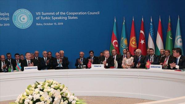 Türk Konseyinden Barış Pınarı Harekatı'na destek