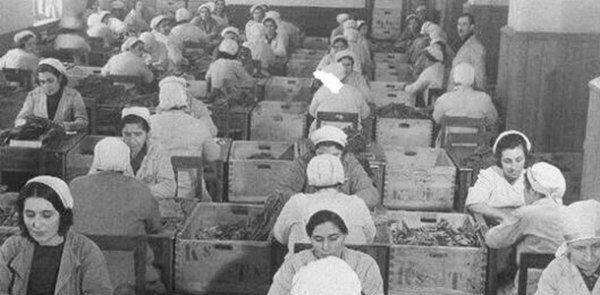 Türkiye de kadının adı: Ayrımcılık düşük ücret güvencesiz istihdam