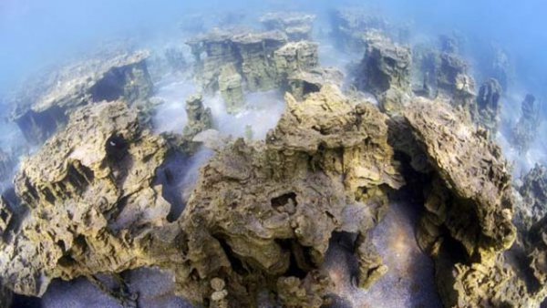 Van Gölü nde 800 bin yıldır ilk